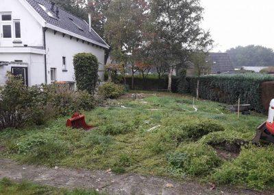 Tuin vóór de werkzaamheden